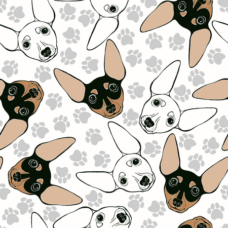 Miniature Pinscher. Seamless pattern with cute dog faces and dog traces. Illustration
