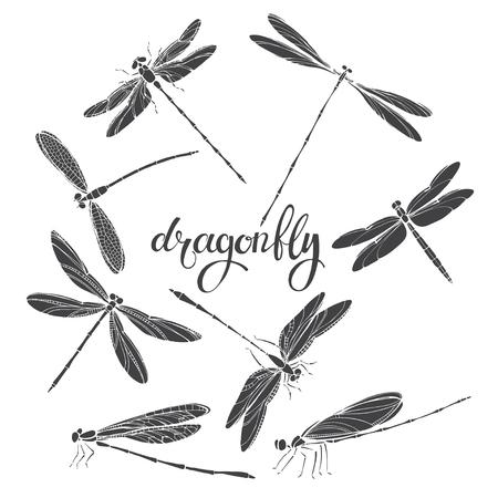 잠자리. 실루엣. 흰색 배경에 벡터 일러스트 레이 션. 디자인, 8 곤충에 대 한 격리 된 요소입니다.