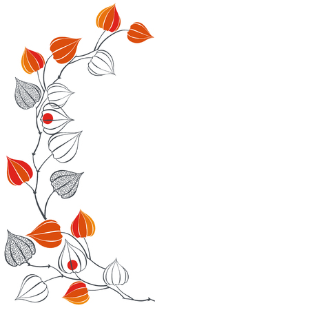 Floral background with branches of physalis. Vector illustration with place for text. Can be used as greeting card, invitation or element for your design.