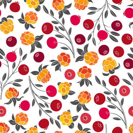 Seamless vector pattern with cranberry and cloudberry on a white background. Northern berries.