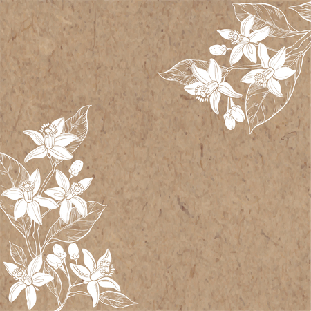 Floral background with hand-drawn branches of flowers neroli. Vector illustration on a kraft paper with place for text. Invitation, greeting card or an element for your design.