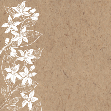 Floral background with hand-drawn branches of flowers neroli