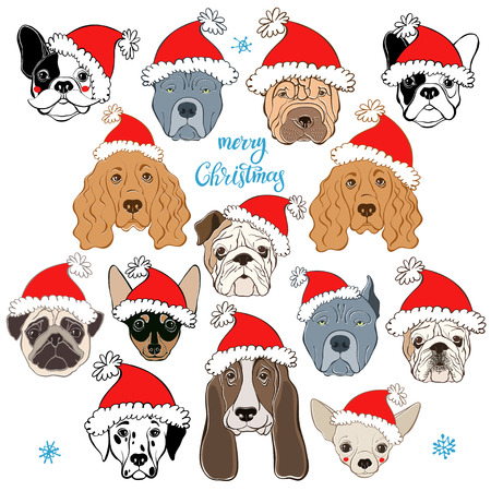 A Vector set of dogs face in Santas hat. Dog - animal symbol of new year 2018. Hand-drawn isolated elements on a white background. Ten different dog breeds.