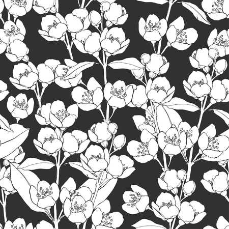 Seamless pattern with blossoming branches of jasmine on black background. Flowers jasmine. Çizim