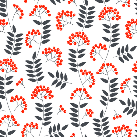 Seamless vector pattern with red ashberry on a white background. Illustration