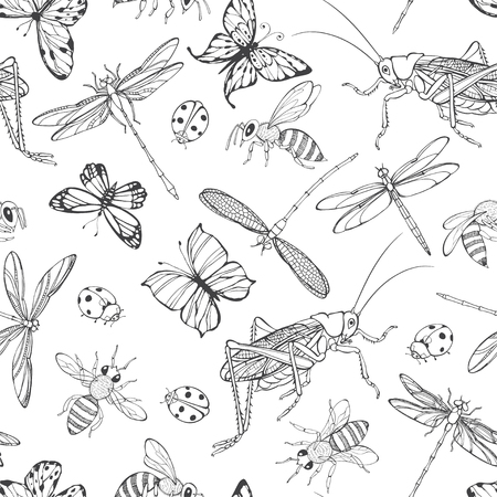 Insects vector background with ladybirds, bees, butterflies, dragonflies and grasshoppers. Seamless pattern on a white background. Vettoriali