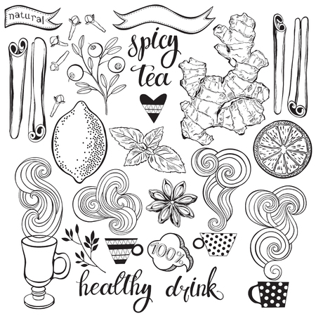 Spicy tea. Vector illustration with isolated elements of ingredients. Black outlines set on a white background.
