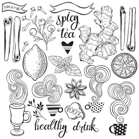Pittige thee. Vector illustratie met geïsoleerde elementen van ingrediënten. Zwarte contouren ingesteld op een witte achtergrond. Stockfoto - 96991979