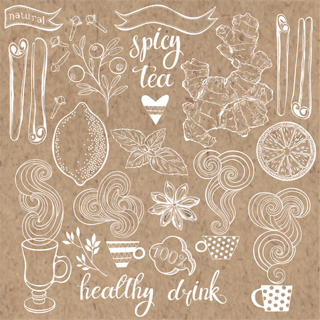 Spicy tea. Vector illustration with isolated elements of ingredients.