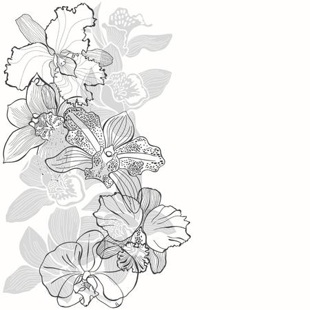 Fondo floral con orquídeas sobre un fondo blanco. Ilustración de vector con lugar para el texto. Composición vertical. Tarjeta de felicitación, invitación o elementos aislados para el diseño.