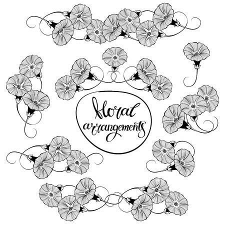 Bindweed. Isolated arrangements, eight variants. Black and white vector hand-drawn illustrations.