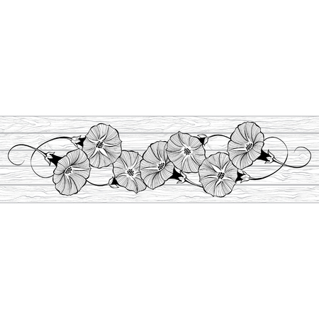 Floral design with bindweed on the texture of wood. Vector illustration with place for text. Greeting card, invitation or isolated elements for design. Ilustração