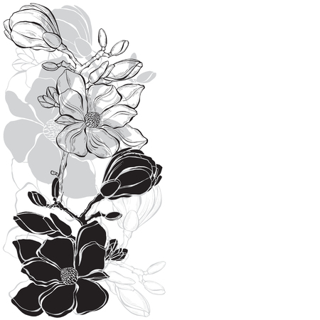 Floral design with magnolia on a white background. Vector illustration with place for text. Greeting card, invitation or isolated elements for design.Vertical composition.
