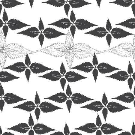 Monochrome floral pattern with leaves of nettle on white background. Seamless background.