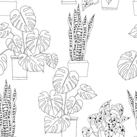 Seamless pattern with houseplants in pots on white background. Sansevieria, Monstera, Scindapsus aureus Eagler.