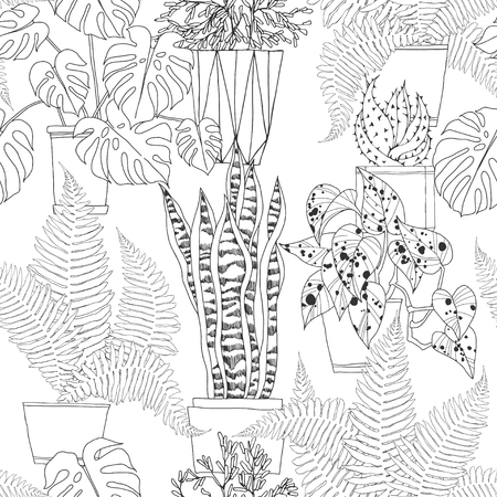 Seamless pattern with houseplants in pots on white background. Hand-drawn vector monochrome illustration.