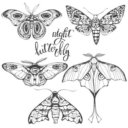 Set of butterflies silhouettes. Illusztráció