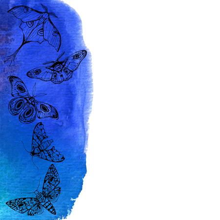 Background with night butterflies and blue watercolor elements. Vector illustration with space for text.
