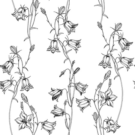 Bluebells. Monochrome floral background. Vector illustration. Ilustração
