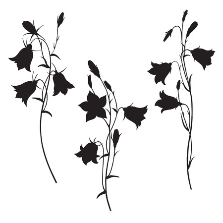 Bluebell flowers. Sketch. Hand drawn silhouette vector illustration, isolated floral elements for design on white background.