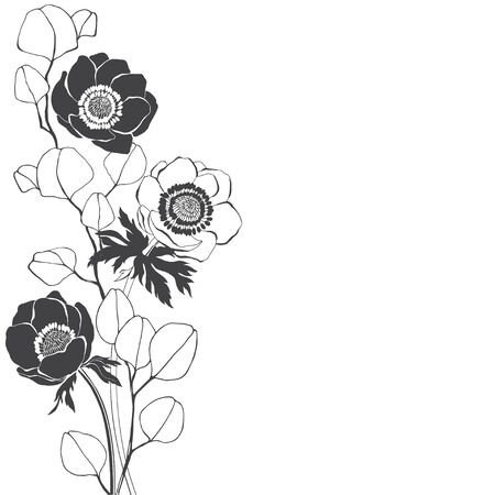 Vector illustration with anemone flowers and eucalyptus branches. Design element. Invitation, greeting card.  イラスト・ベクター素材
