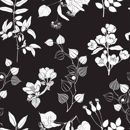 Black and white nature background.