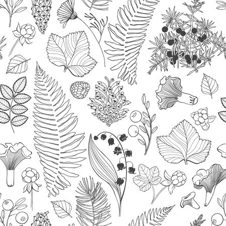 Forest plants. Black and white nature background. Illustration