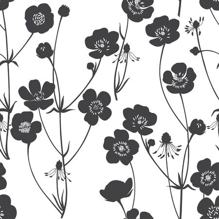 Buttercups. Flowering wildflowers. Vector. Black and white illustration. Nature background. Stock Illustratie