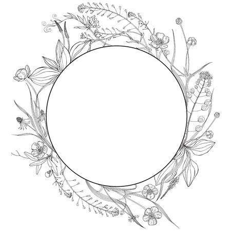Vector illustration with wildflowers and herbs, design element on white. Invitation, greeting card.  Stock Illustratie