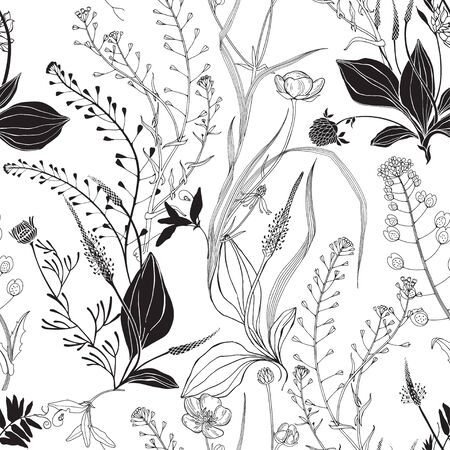 Wildherbs and wildflowers. Nature background.Black and white. Outline and silhouette drawing on a white background.