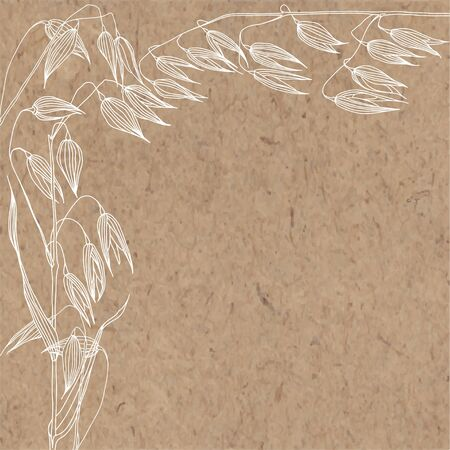 Oats on kraft paper. Vector. Nature background.