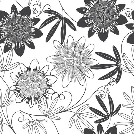 Passionflower. Floral background. Vector illustration. Black and white.