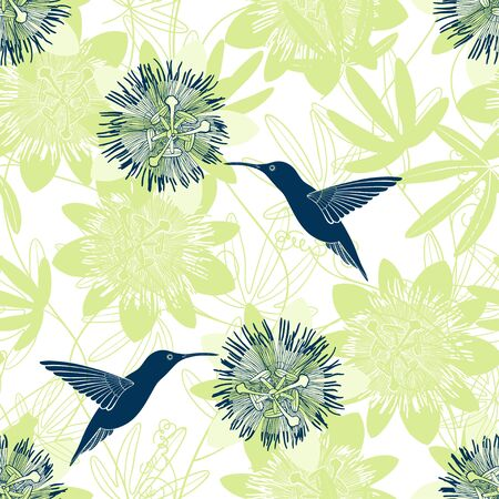 Passionflower and hummingbirds. Floral background. Vector illustration.