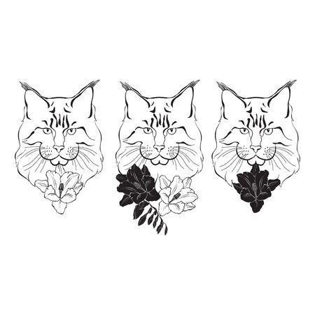 Maine coon, can be an element your design.