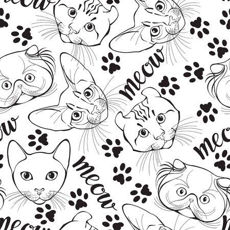 Il fait face à différentes races et trace des pattes de chat. Fond d'art animalier. Vecteur. Vecteurs