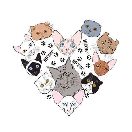 Cats of different breeds. Hand-drawn vector illustration of heart-shaped.