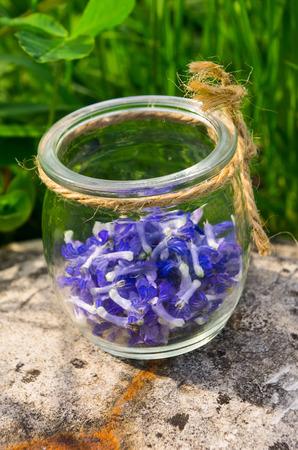 glass jar: blue flowers in a glass jar on stone Stock Photo