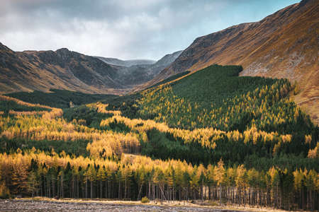 Autumn colors in picturesque Corrie Fee, Glen Doll, Scottish Highlands in late October.