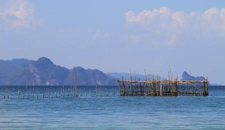 fish farm: Fish farm
