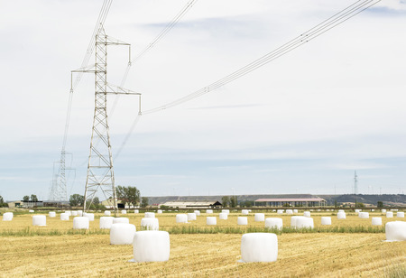 compacted: Straw bales compacted and covered in white nylon , scattered on a field