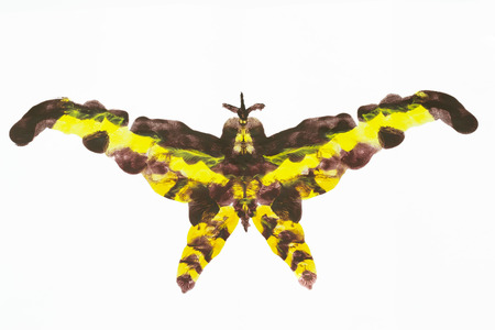 blending: Abstract shape similar to an insect moth  made from symmetrical blending of acrylic painting colors, isolated on white Stock Photo