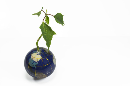 environmental issues: Small green planet apparently growing from Earth like globe , conceptual image about environmental issues and sustainable future development