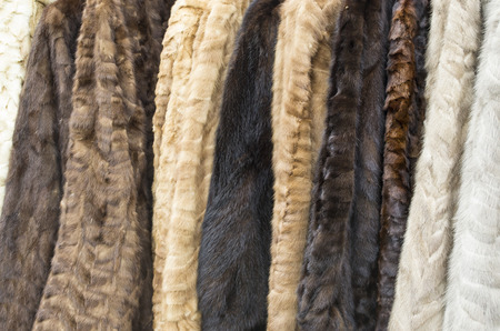 Women's fur coats on display of different colours aligned forming a background