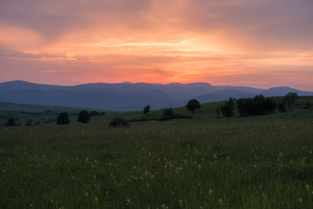 Fiery summer sunset over the the Almaj Valley with the Carpathian Mountains in the background and a meadow full of flowers in the foreground