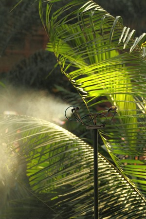 Morning irrigation sprinkler working in botanic garden Stock Photo - 7868501