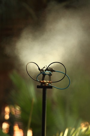 Morning irrigation sprinkler working in botanic garden photo