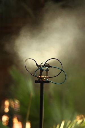 Morning irrigation sprinkler working in botanic garden Stock Photo - 7868464
