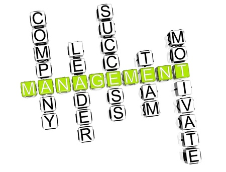 3D Management Crossword on white background photo