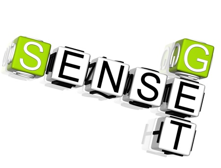 3D Get Sense Crossword on white background photo