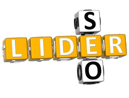 3D Seo Lider Crossword on white background photo